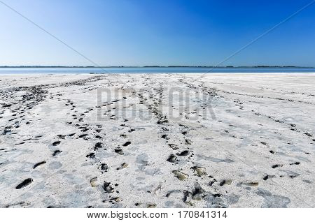 White salt beach of therapeutic mud. Footsteps tracks to the lake. White beach and wonderful blue sky