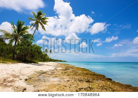 Beautiful caribbean sea and green palmen.Sommer ocean landscape as background.