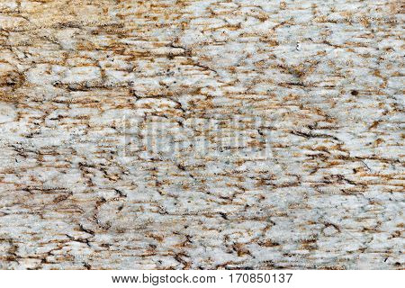 texture of white marble slabs with brown spots detailed structure of stone in natural patterned for background and design.
