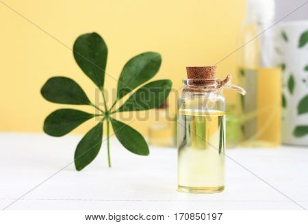 Bottle of golden essential oil with string, green plant leaf decor, yellow background. Calming aromatherapy massage time.