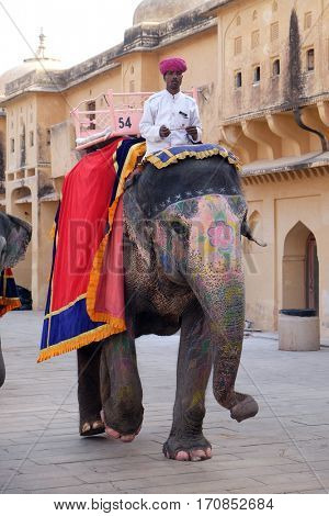 JAIPUR, INDIA - FEBRUARY 16 : Decorated elephants carrying tourists at Amber Fort in Jaipur, Rajasthan, India, on February, 16, 2016.