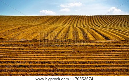 Farm field with furrows and cloudy blue sky