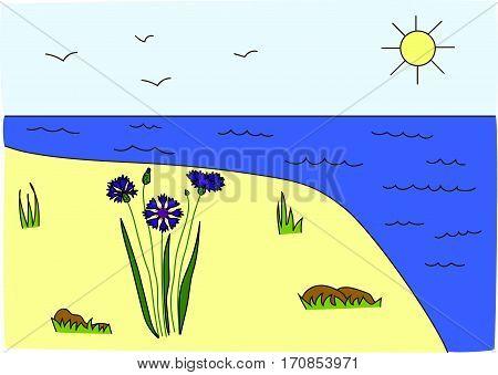 Island. Sandy shore. Blue sea. Sun. Cornflowers.