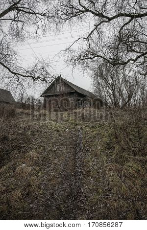 Belarus-November 24, 2016 Groomed trail climbs up the hill and leads to an abandoned wooden house deserted forever, lonely house surrounded by trees and shrubs, an abandoned village