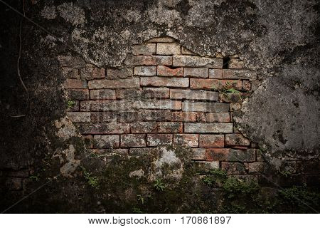 Old Weathered Brick Wall Texture Background With Moss And Fern