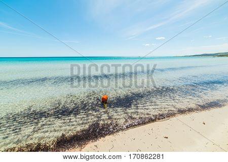 an orange buoy in Sardinia in Italy