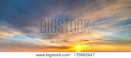 Seagulls flying in a colorful sky at sunset