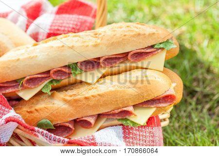 Long baguette sandwiches with salami and cheese for a picnic
