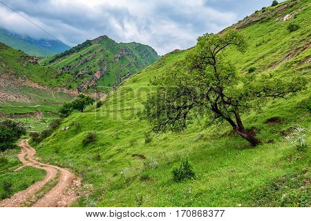 Scenic landscape of Dagestan with meadow and mountains