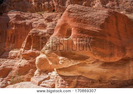 Rocks of pink sandstone resembling fish in Siq canyon in Petra, Jordan