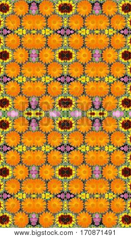 Seamless pattern with floral kaleidoscope. Bright flowers.