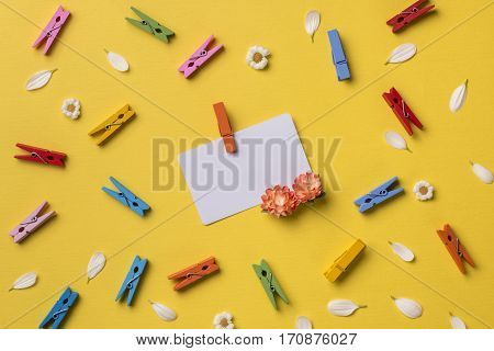 Spring or summer background: business / credit / visiting card mockup with orange flower. Many chamomiles petals bright multicolored clothespins. Top view. Flat lay.