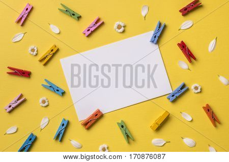 Spring or summer background with frame space for text: blank stationary template / invitation mockup chamomiles and petals many bright multicolored clothespins. Top view. Flat lay.