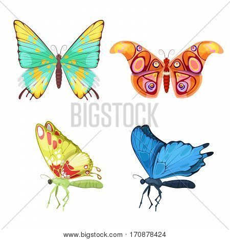 Colorful Tropical Butterflies Insect Set. Vector illustration