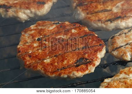 Chicken Or Turkey Burger For Hamburger On Grill