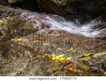 Quebrada del Avila con aguas muy frias
