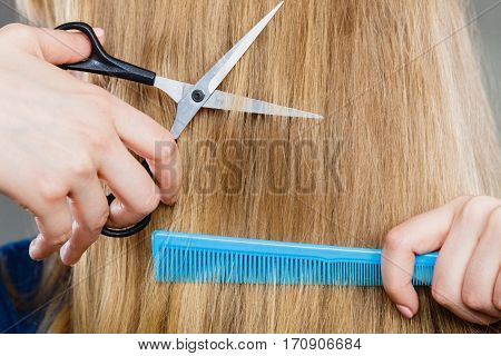 Woman Cutting Down Smoothy Hair.