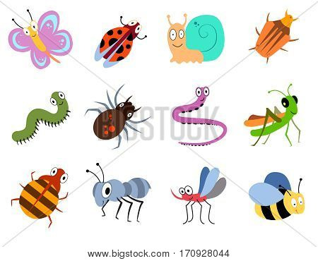 Cute and funny bugs, insects vector collection. Collection of cartoon insects ladybug and butterfly illustration