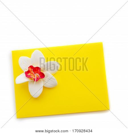 Closeup shot of small yellow envelope decorated with art clay narcissus. Handmade paper work. Copy space. Isolated over white background. Square composition.