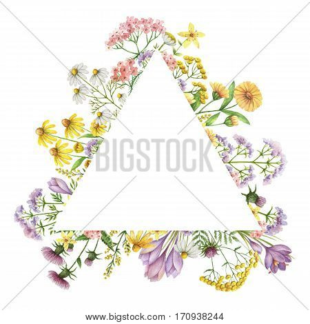 Watercolor triangular frame with medical plants. Healing Herbs for design Natural Cosmetics, aromatherapy, medicine, health products and homeopathy.