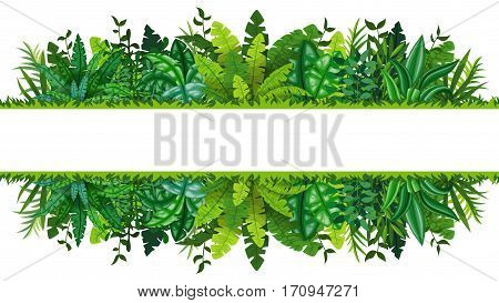 Illustration of a tropical rainforest banner, vector