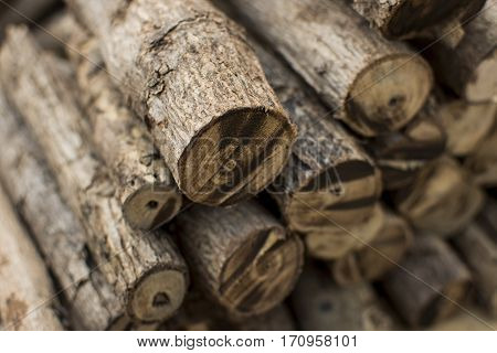 Wood cut into pieces firewood stacked background.