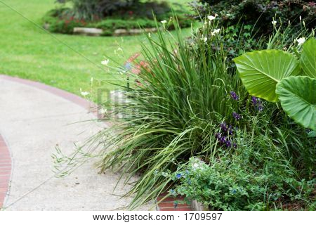 Landscaped Sidewalk