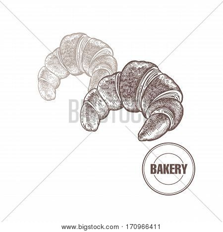 Croissants. Hand drawing a bread product. Vector illustration of food. Kitchen design for the confectionery and bakery cafe restaurant menu. Vintage.