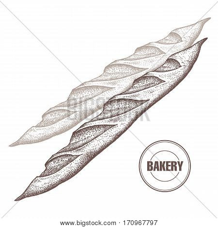 French baguette. Hand drawing a bread product. Vector illustration of food. Kitchen design for the confectionery and bakery cafe restaurant menu. Vintage.