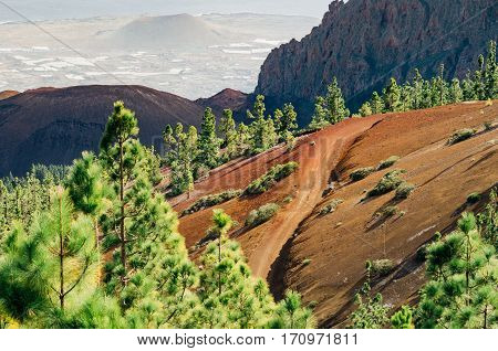 Extreme volcanic road on colorful slopes of Tenerife island Spain
