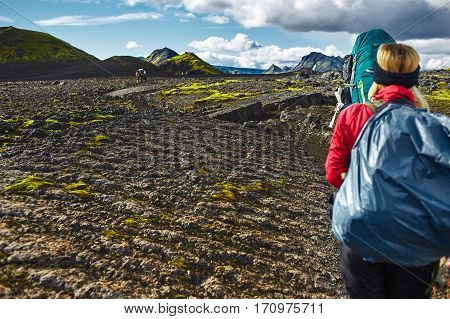 two hikers on the trail in the Islandic mountains. Trek in National Park Landmannalaugar, Iceland. valley is covered with bright green moss