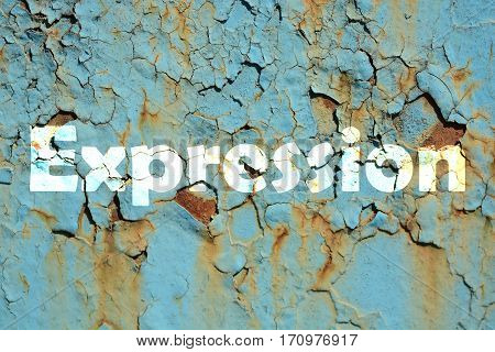 Expression Word Print On The Rusted Metal Corrugated Metal Background