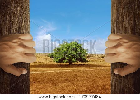 Two Hands Opening Wooden Door With Tree On The Changing Environment