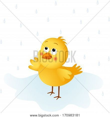 Scalable vectorial image representing a chick in the rain, isolated on white.