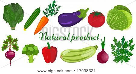 Eco food menu background. Fresh organic food healthy eating vector background with place for text. Set of vegetarian food . Vector vegetarian organic healthy food cuisine. organic natural realistic vegetable