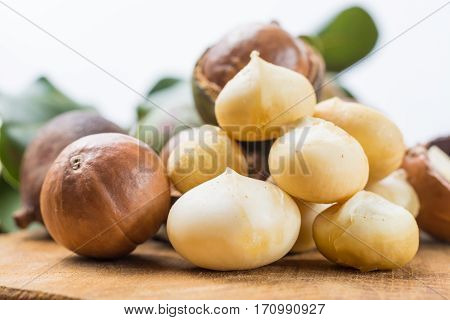 Macadamia nuts harvest close up also in shell