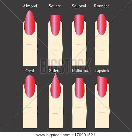 Set of nail forms. Female manicure. Set kinds of nails. Fashion nail shape. Icons nail shape. Collection of kinds of nails. Fashion trends. Vector illustration