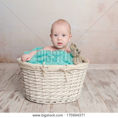 funny little baby sitting in wicker basket with toy-hare