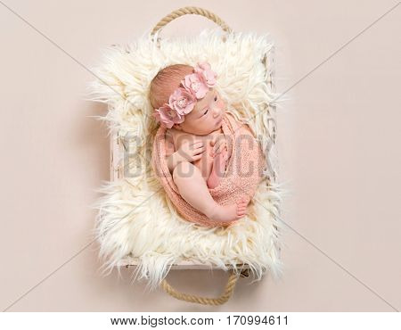 Lovely infant in a flowery hairband, wrapped with pink blanket, resting in a baset, topview