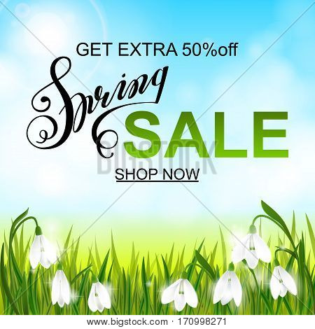 Spring sale banner, background with galanthus snowdrop flowers, green grass, lettering and blue sky. Seasonal discount
