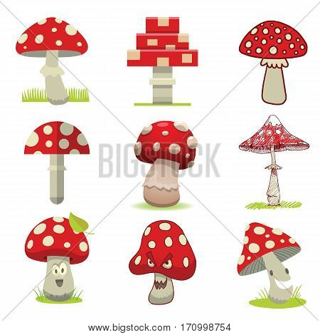 Bright different types of mushrooms set vector. Tasty food cartoon style on white background. Harvest cooking healthy vegetarian plant forest illustration.