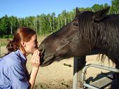 """Picture of a young lady introducing herself to a VERY big black Percheron horse named """"Ben."""" poster"""