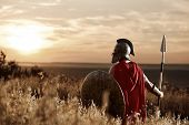 Back view of warrior man wearing iron helmet and red cloak holding sword, soldier looking and turned back. Male wearing like spartan or antique roman at field on sunset. poster