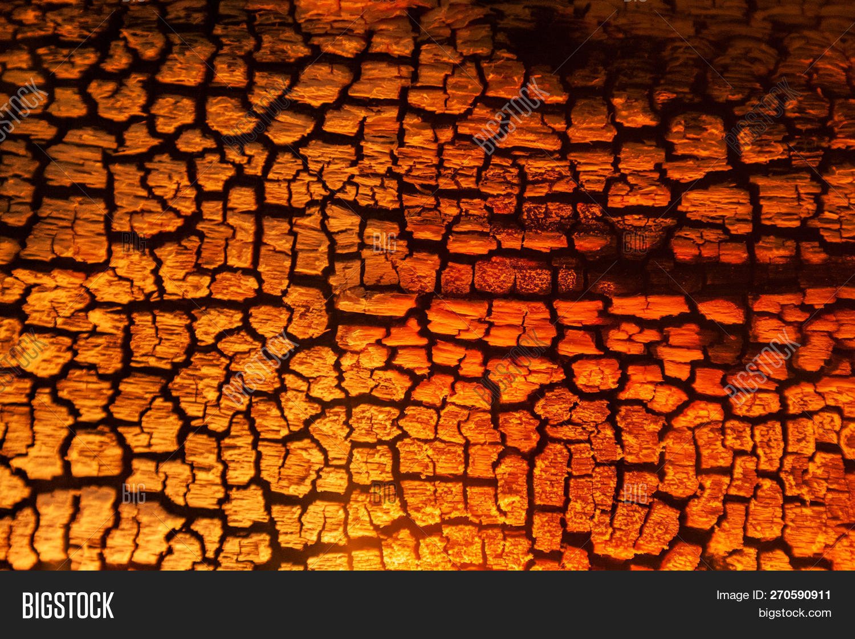 Burnt Wood Texture Image Photo Free Trial Bigstock