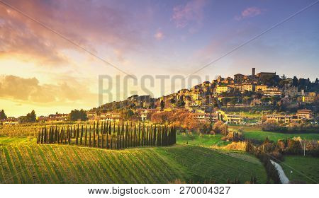 Casale Marittimo Village, Vineyards And Countryside Landscape In Maremma. Pisa Tuscany, Italy Europe