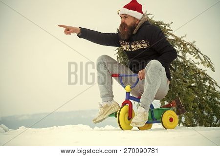 Angry Hipster Carrying Xmas Tree On White Snow. Cyclist Shouting And Pointing Finger In Santa Hat. C