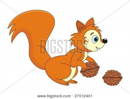 Squirrel cartoon vector illustration