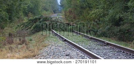 Railroad Tracks Blocked By Trees After Hurricane Florence Hit Near Fayetteville North Carolina
