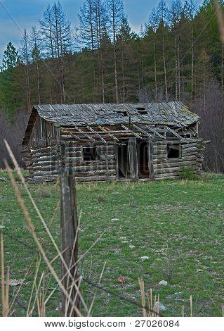 Old Abandoned Homestead Cabin