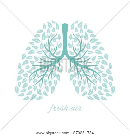 Lungs With Foliage. Healthy Ecological Lungs With Leaves Anti Tuberculosis Concept Vector Illustrati